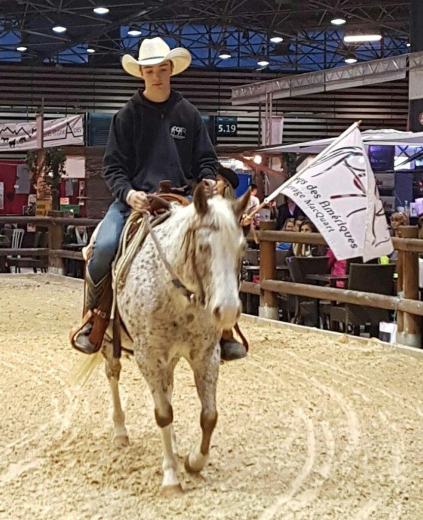 acheter un poney des amériques en auvergne