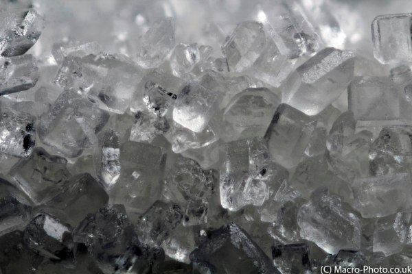 Sugar at 4.2x Magnification