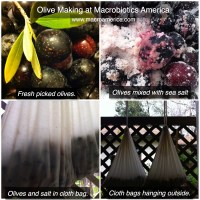 Olive Making (Salt Cured) by Cynthia Briscoe