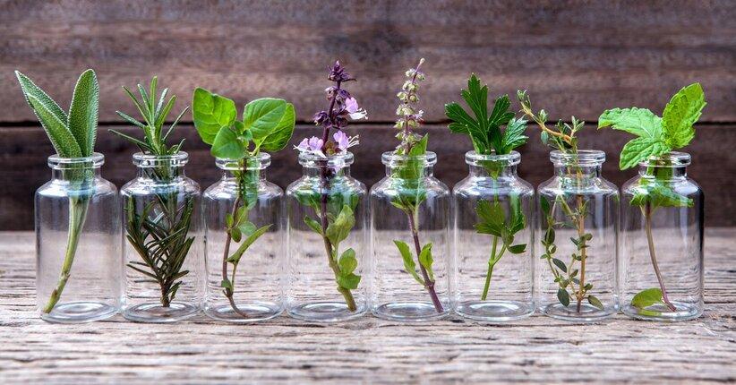 Gli idrolati: gli ingredienti naturali di bellezza