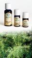 Ginepro Extra - Olio Essenziale 5 ml. (2990-05)