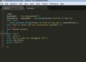 SublimeText IDE