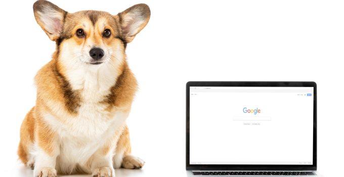 Google Algorithm and SEO