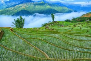 The Sapa Valley.