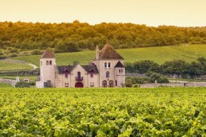 Château and vineyards, Burgundy