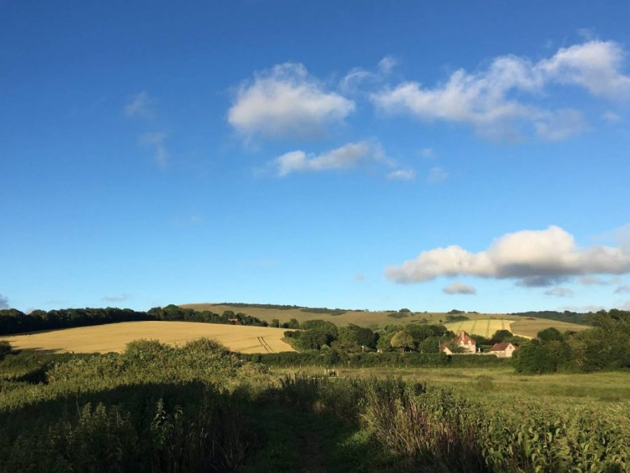 Rolling countryside on the South Downs Way