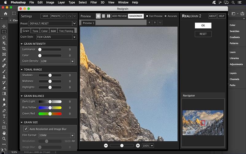 Imagenomic Realgrain mac
