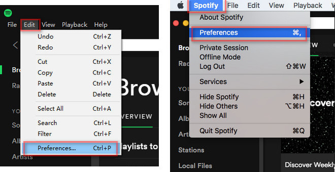 Open Spotify Preferences