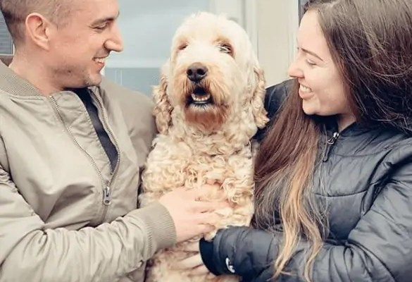 Adding A Rescue Dog To Our Family