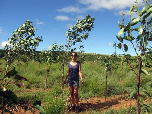 Portrait: Marie Nomena Allimant : « L'Entreprenariat social, une nouvelle forme de développement»
