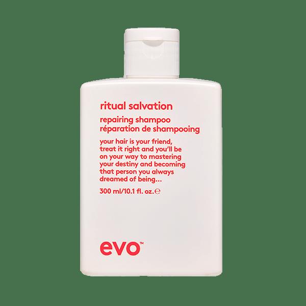 EVO - Ritual salvation