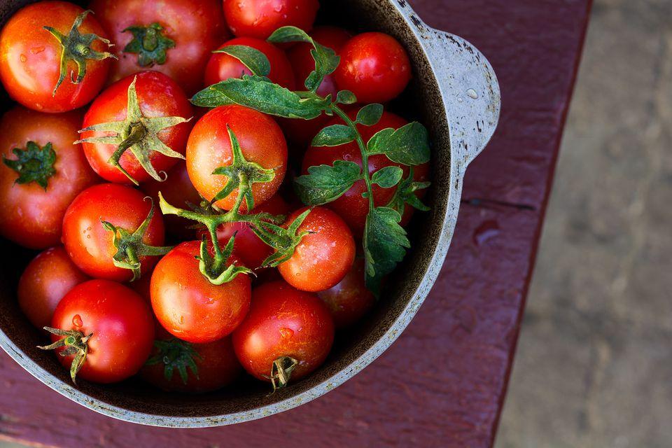 15 συνταγές με ντομάτες και ντοματίνια εποχής στα καλύτερά τους