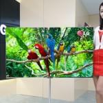 """LG ahora muestra su Televisor OLED de 55"""""""