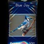 Blue Jay Larger Panel Peyote Seed Bead Pattern PDF or KIT DIY Bird-Maddiethekat Designs