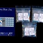 Blue Jay Tiny Mini Amulet Bag Peyote Seed Bead Pattern PDF or KIT DIY Bird-Maddiethekat Designs