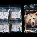 brown bear 01 small panel peyote seed bead pattern pdf or kit diy maddiethekat designs 2