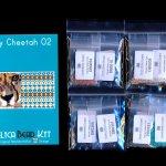 Cheetah 02 Tiny Mini Amulet Bag Peyote Seed Bead Pattern PDF or KIT DIY-Maddiethekat Designs