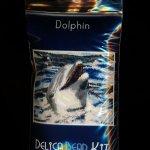 Dolphin Larger Panel Peyote Seed Bead Pattern PDF or KIT DIY-Maddiethekat Designs