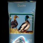 Ducks Larger Panel Peyote Seed Bead Pattern PDF or KIT DIY Bird-Maddiethekat Designs
