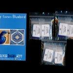 Eastern Bluebird Tiny Mini Amulet Bag Peyote Seed Bead Pattern PDF or KIT DIY-Maddiethekat Designs