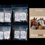 Horses Larger Panel Peyote Bead Pattern PDF or KIT DIY-Maddiethekat Designs