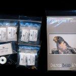 peregrine falcon larger panel peyote bead pattern pdf or kit diy bird maddiethekat designs 2