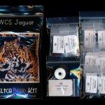 wild cat series jaguar larger panel peyote seed bead pattern pdf or kit diy maddiethekat designs 2