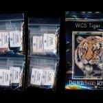 wild cat series tiger small panel peyote seed bead pattern pdf or kit diy maddiethekat designs 2