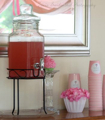 Sparkling Pink Punch Party Recipe