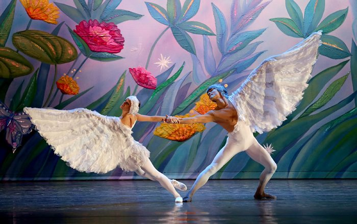 moscow ballet nutcracker dove of peace