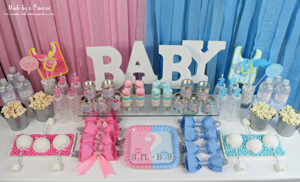Gender Reveal Party Ideas Team Pink and Team Blue theme