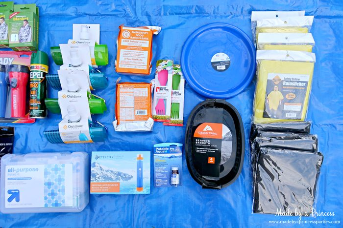 Unique School Silent Auction Idea Emergency Preparedness Kit includes water tabs and 5 year shelf life food