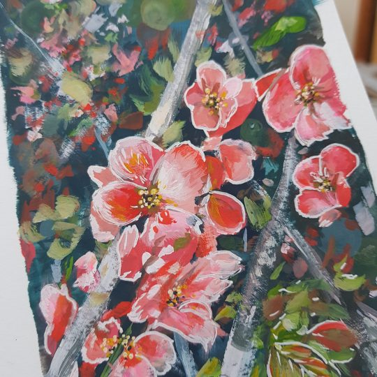 Beautiful gouache painting of flowering Japanese quince blossoms