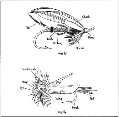 Fishing fly designs use bits of feather and fur tied to the hook to look like the segmented bodies of insects. The basic segments of a dry fly are the long and stiff tail, the body, the hackle (a flayed section of feathers that looks like legs touching the water), and out-stretched wings. On a wet fly, the hackle is sparse, and the wing is folded back over the body. Nymphs, streamers, and bucktails have soft tail and body material, which is sometimes wrapped around lead to make them sink more quickly. They also have long, soft wings often made of marabou feathers that make the silhouettes like minnows. The tier uses a special, y-shaped bobbin for holding a spool of thread, fine scissors, and a vise. A rotary vise is especially useful for turning the fly during the process. Different materials are used depending on the type of fly.