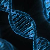 Medicina personalizzata: perché per CoQua Lab ogni persona è unica