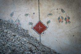Pompei Regio V fonte PaP Particolare Casa di Giove