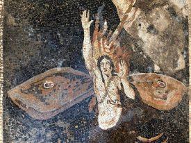 Pompei Mosaico Orione Casa Giove Regio V fonte PaP (2)