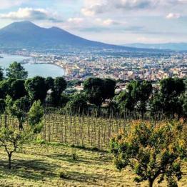 Il Vesuvio visto da Quisisana