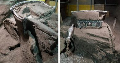 Pompei, straordinaria scoperta nella villa di Civita Giuliana: ritrovato un carro cerimoniale