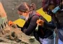 Pompei, il racconto dello scavo a Civita Giuliana: ecco come è stato scoperto il carro cerimoniale