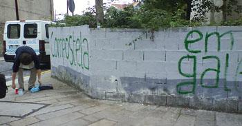 muralnov2007a