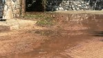 Raw Sewage in Monte