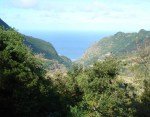 Two Tourists Fall on Levada