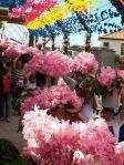 Nossa Senhora do Bom Despacho Festival