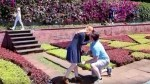 JARDIM BOTÂNICO WAS STAGE OF REQUEST OF MARRIAGE (WITH VIDEO)