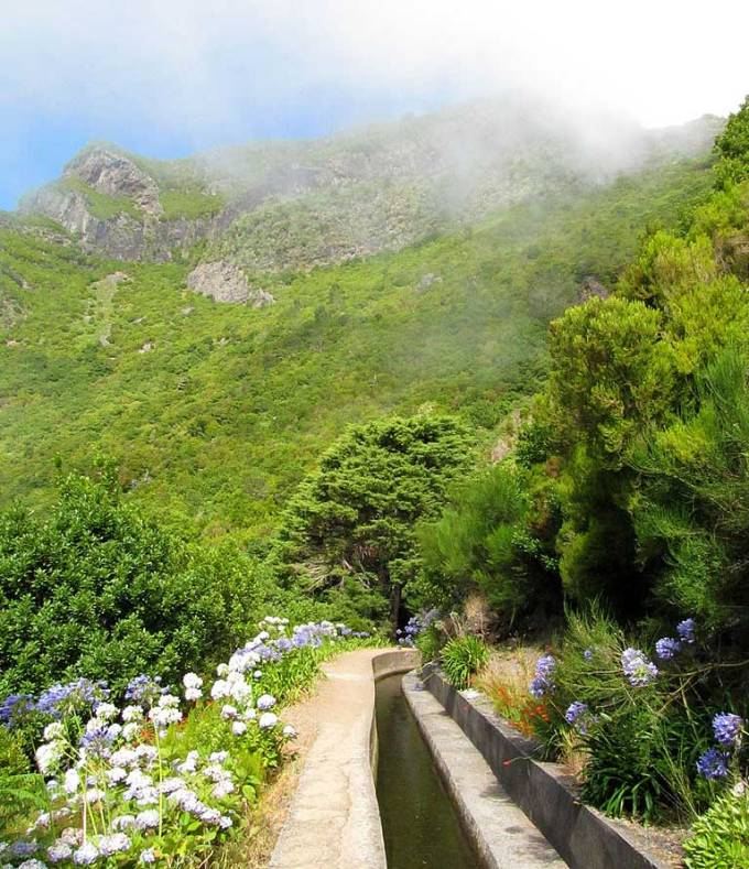 wandelen op Madeira levada bloemen Folhadal