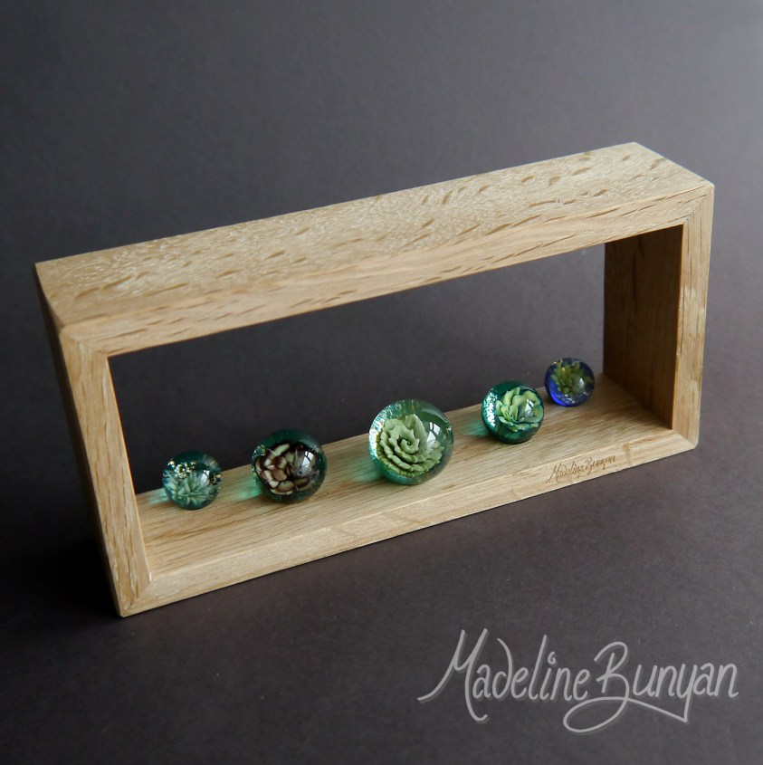 Everlasting Succulents - Framed Five Marble artwork, handmade glass Marble, Oak frame