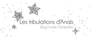 Blogroll -Tribulations d'anais