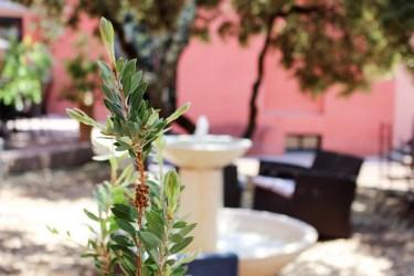 Disini sun bon plan restaurant 3 mademoiselle e