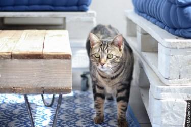 je décore ma terrasse pour l'été bord de mer 10 mademoiselle-e